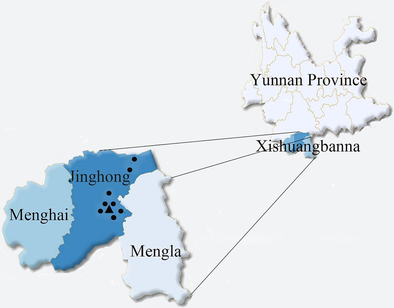 Mutation Screening For Thalassaemia In The Jino Ethnic Minority