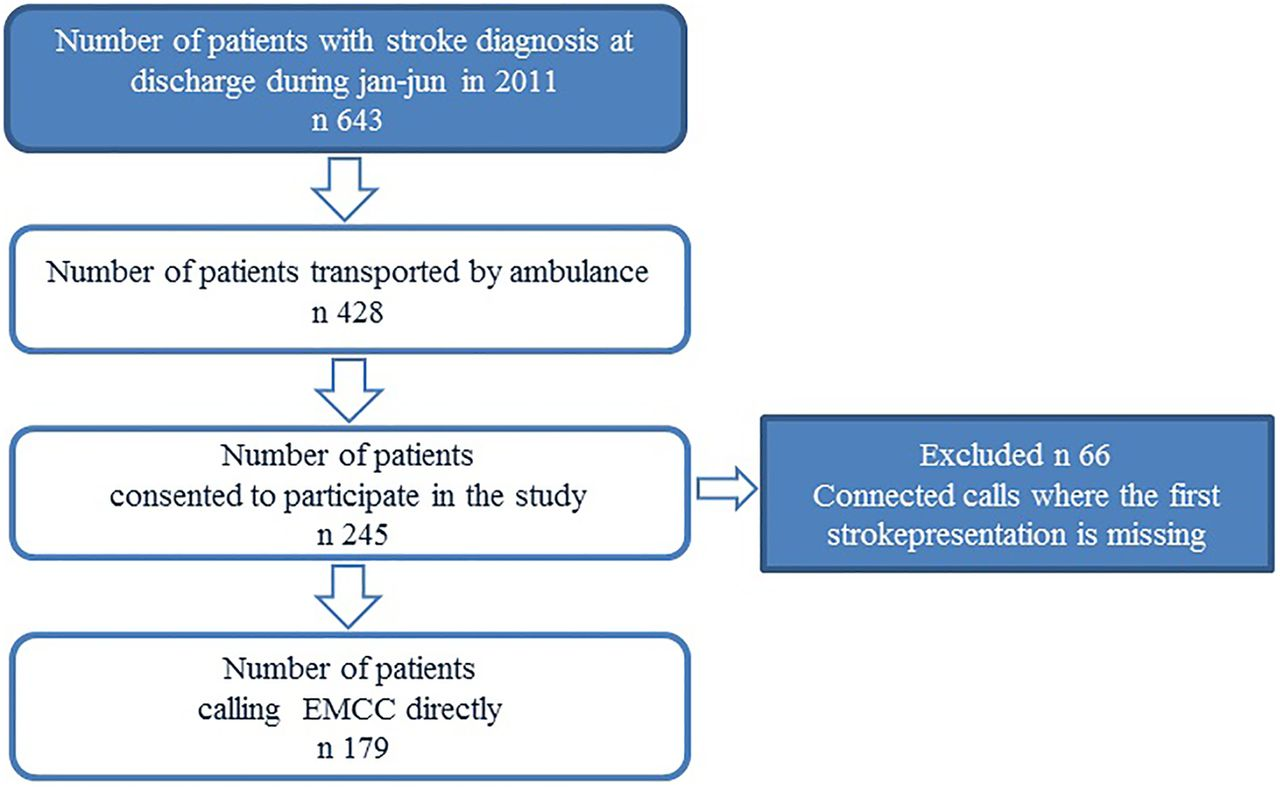Identification of stroke during the emergency call: a
