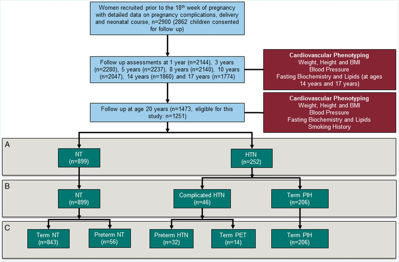 Clinical cardiovascular risk during young adulthood in offspring of download figure geenschuldenfo Choice Image