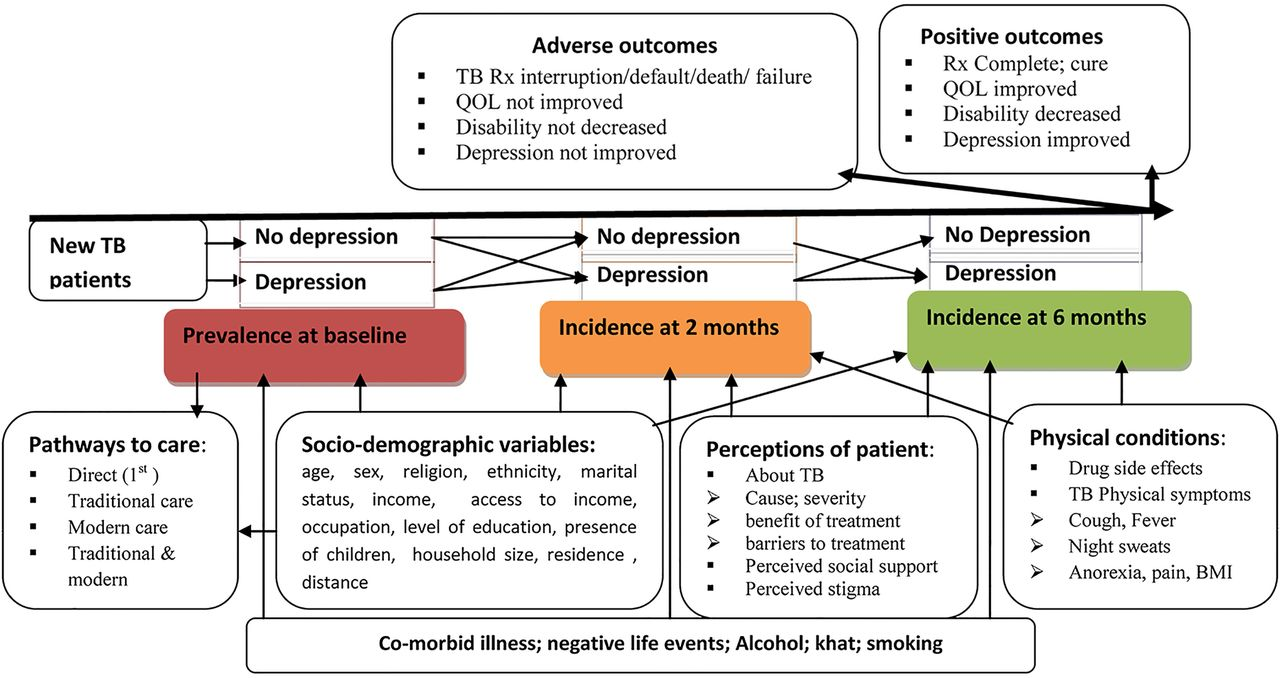 Depression among patients with tuberculosis: determinants, course