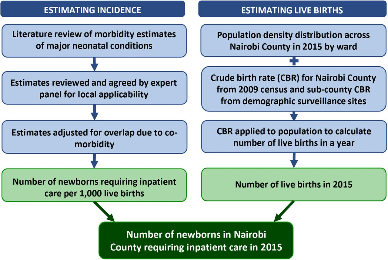 Where To Collect Birth Certificate In Nairobi Best Design