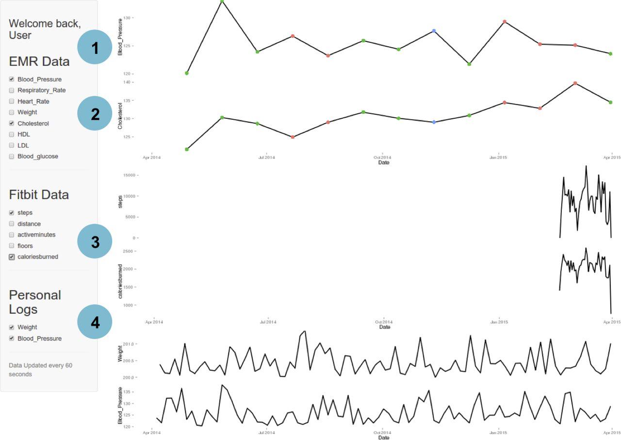 EHDViz: clinical dashboard development using open-source