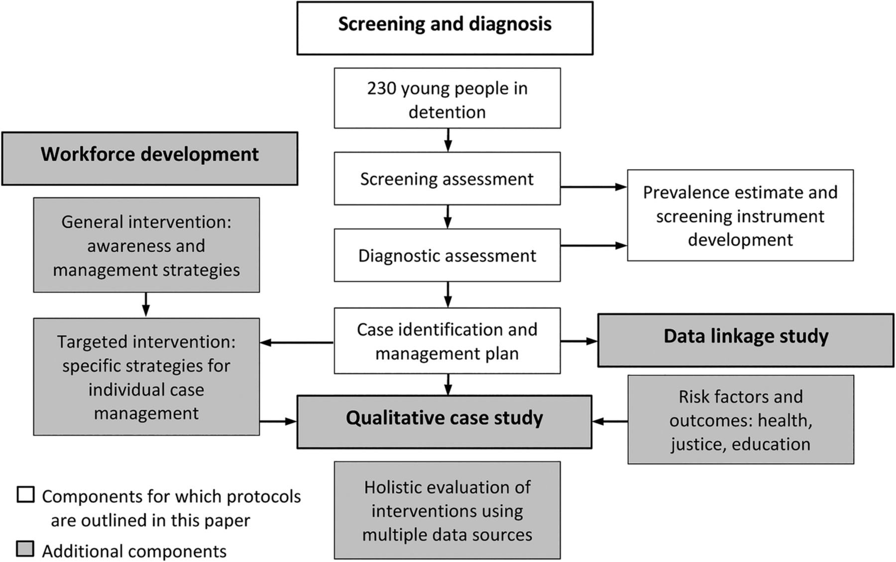 Study protocol for screening and diagnosis of fetal alcohol