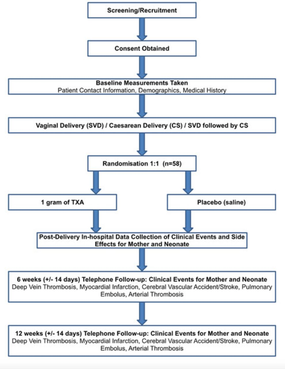Protocol For A Pilot Randomised Double Blinded Placebo Controlled