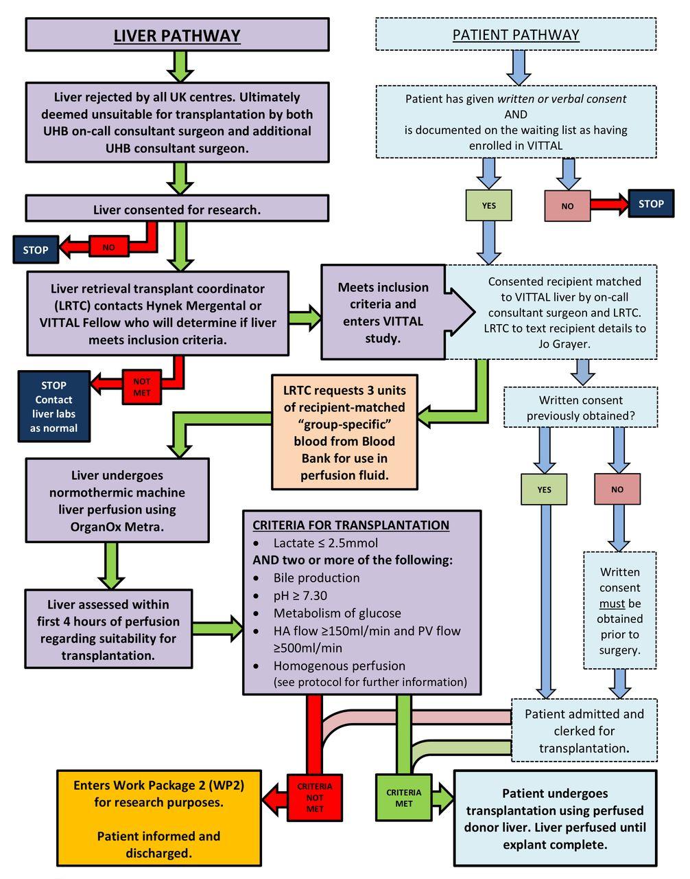 Viability testing and transplantation of marginal livers