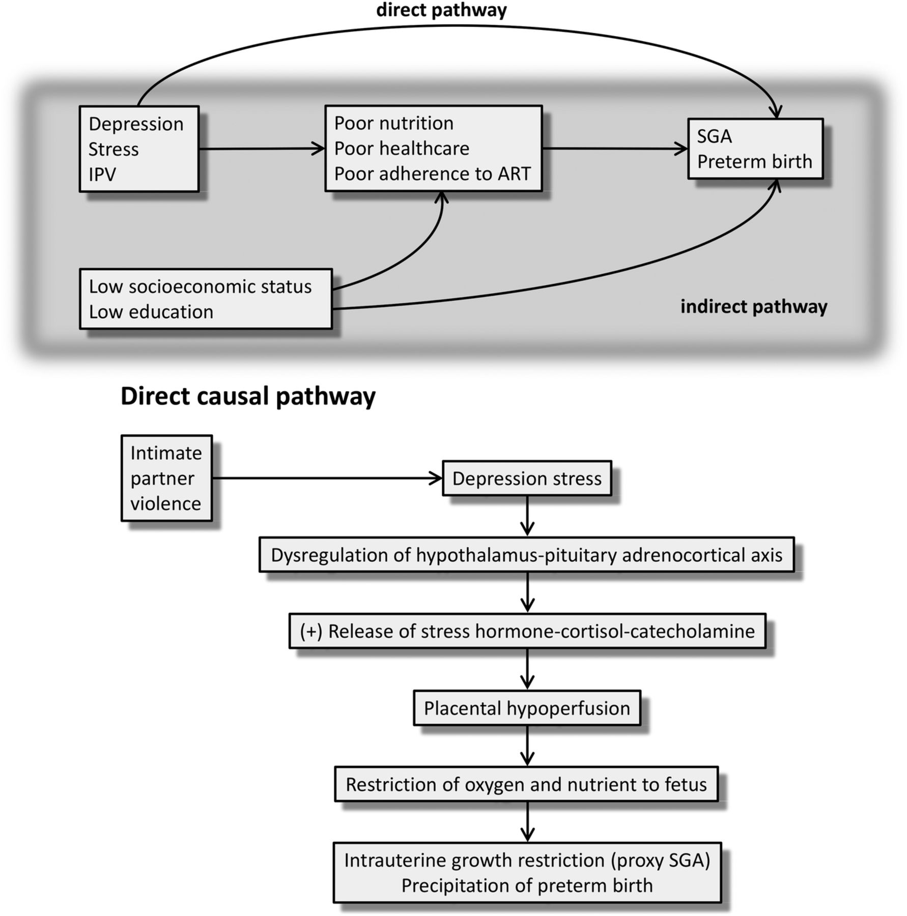 Effect of alcohol consumption and psychosocial stressors ...