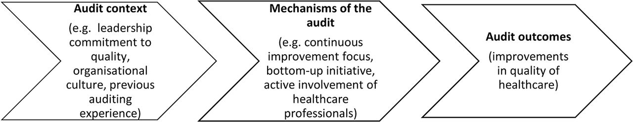 what is an organisational audit