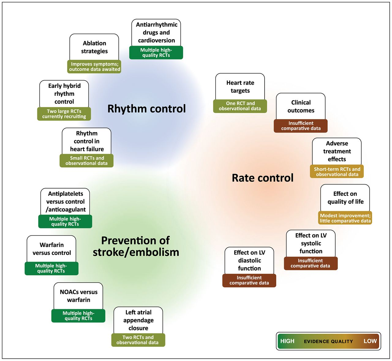 a review of rate control in atrial fibrillation  and the
