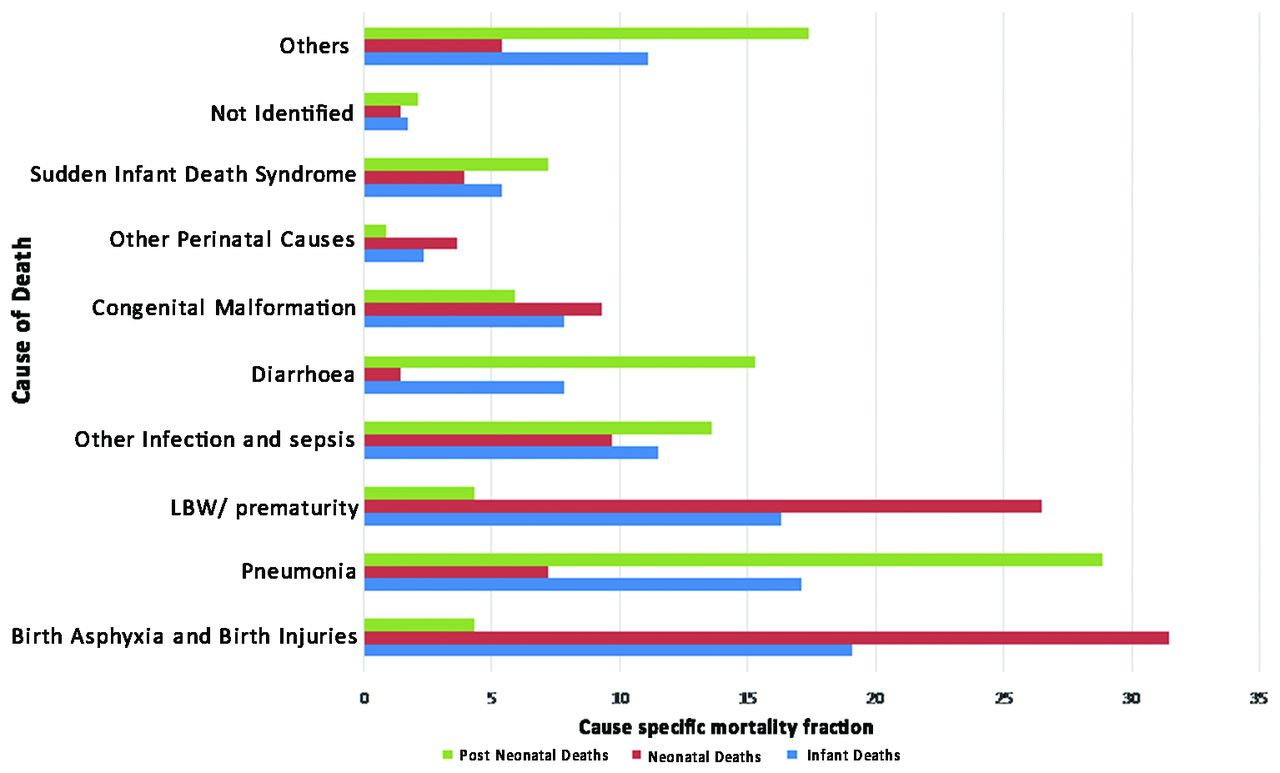 causes of and contributors to infant mortality in a rural community
