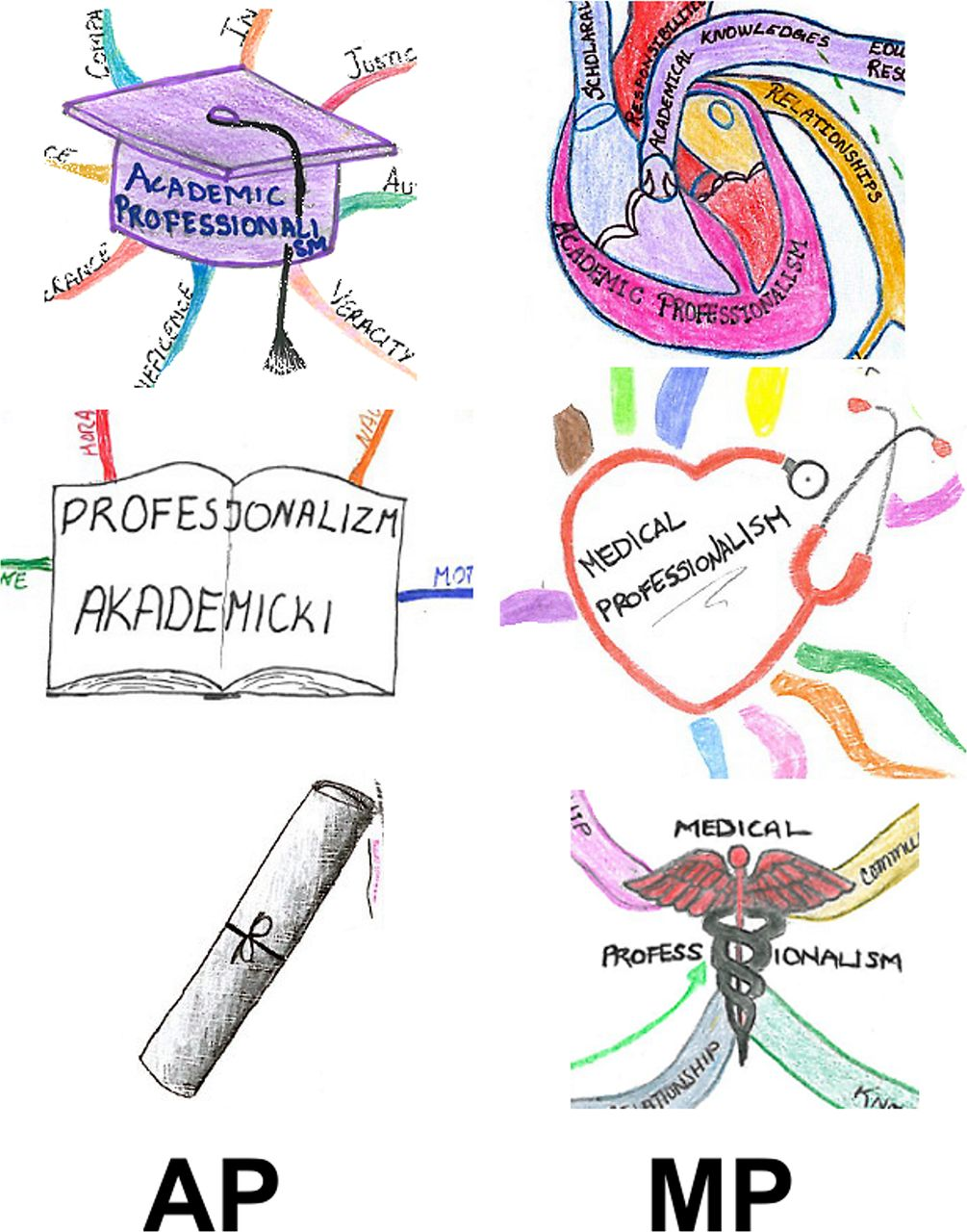 preclinical medical students understandings of academic and medical