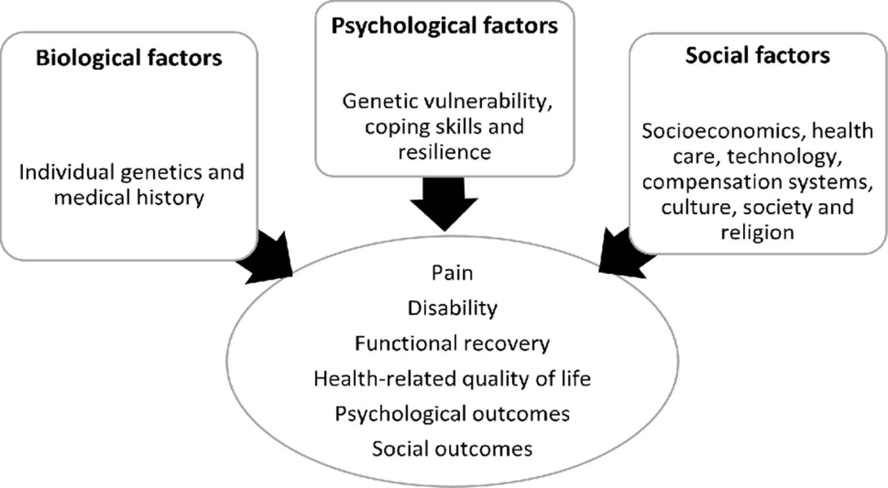 biological factors in psychology 1 developmental psychology notes i to what extent do biological, cognitive and socio-cultural factors influence human development (gender role formation.