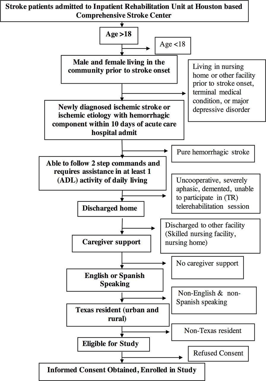 Telemedicine-guided education on secondary stroke and fall ...