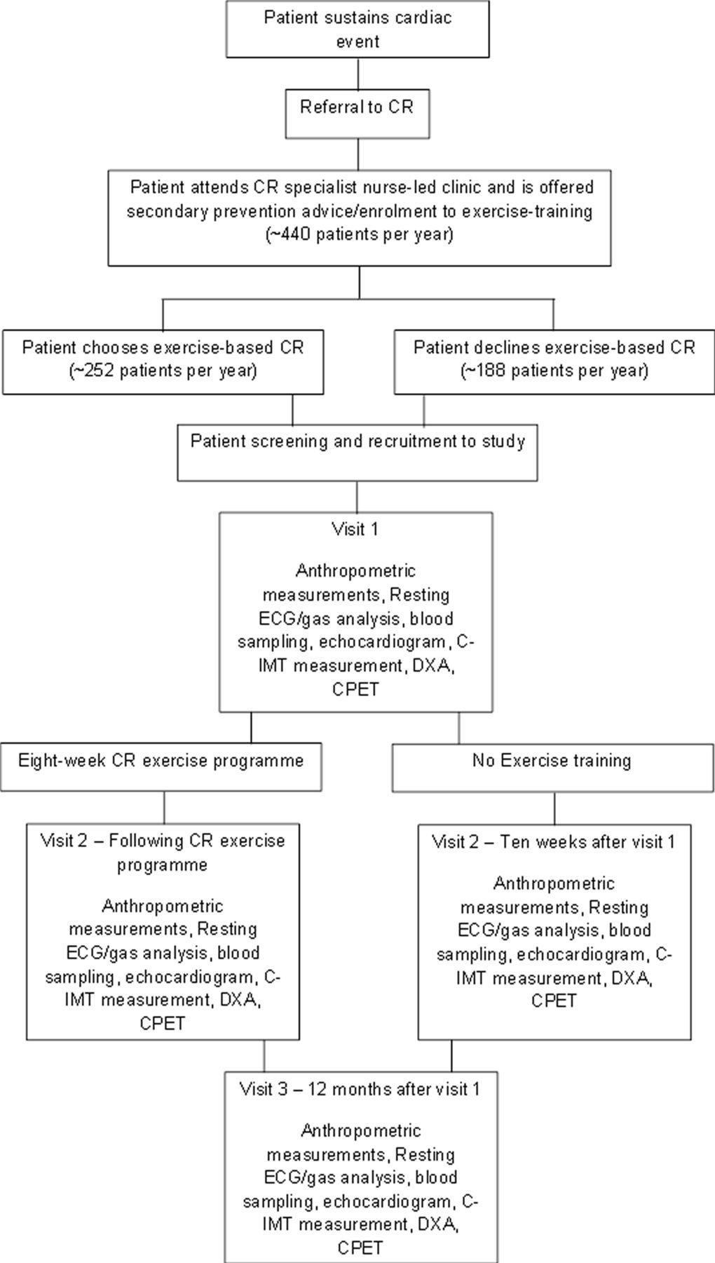 CARE CR-Cardiovascular and cardiorespiratory Adaptations to