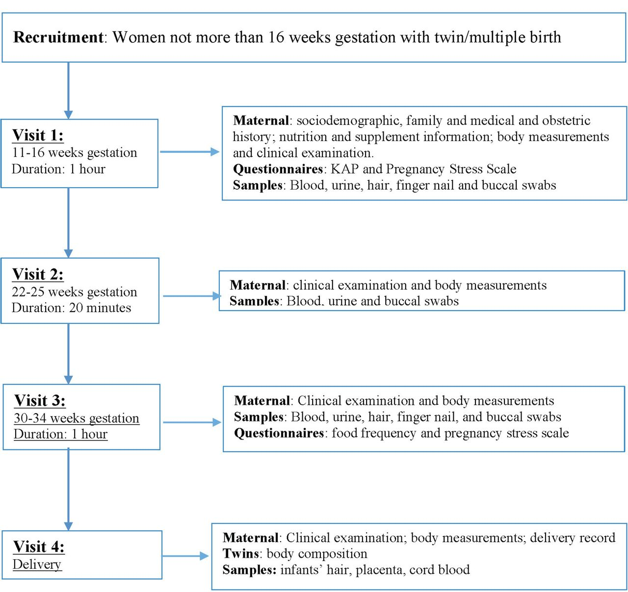 Protocol for a longitudinal twin birth cohort study to