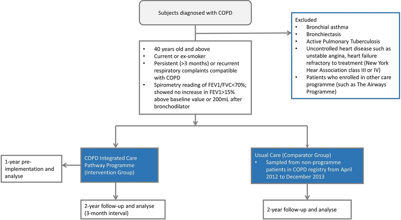 Download figure · Open in new tab · Download powerpoint. Figure 1.  Identification of the study cohort. COPD, chronic obstructive pulmonary ...