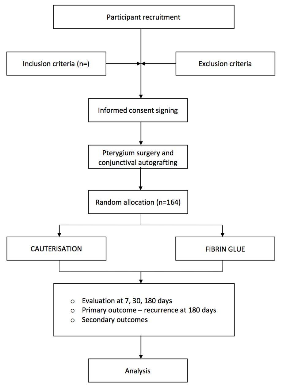 Cauterisation versus fibrin glue for conjunctival