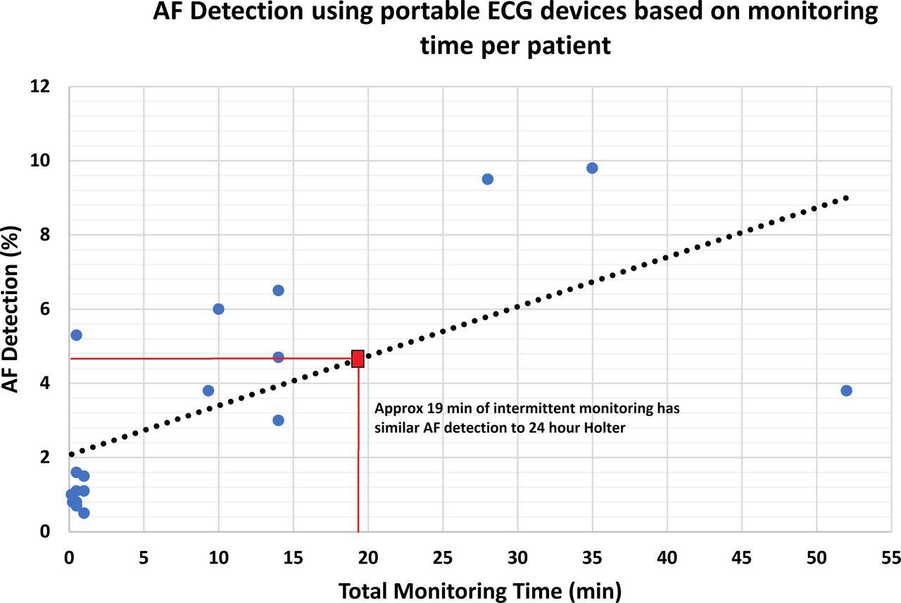 atrial fibrillation detection using single lead portable