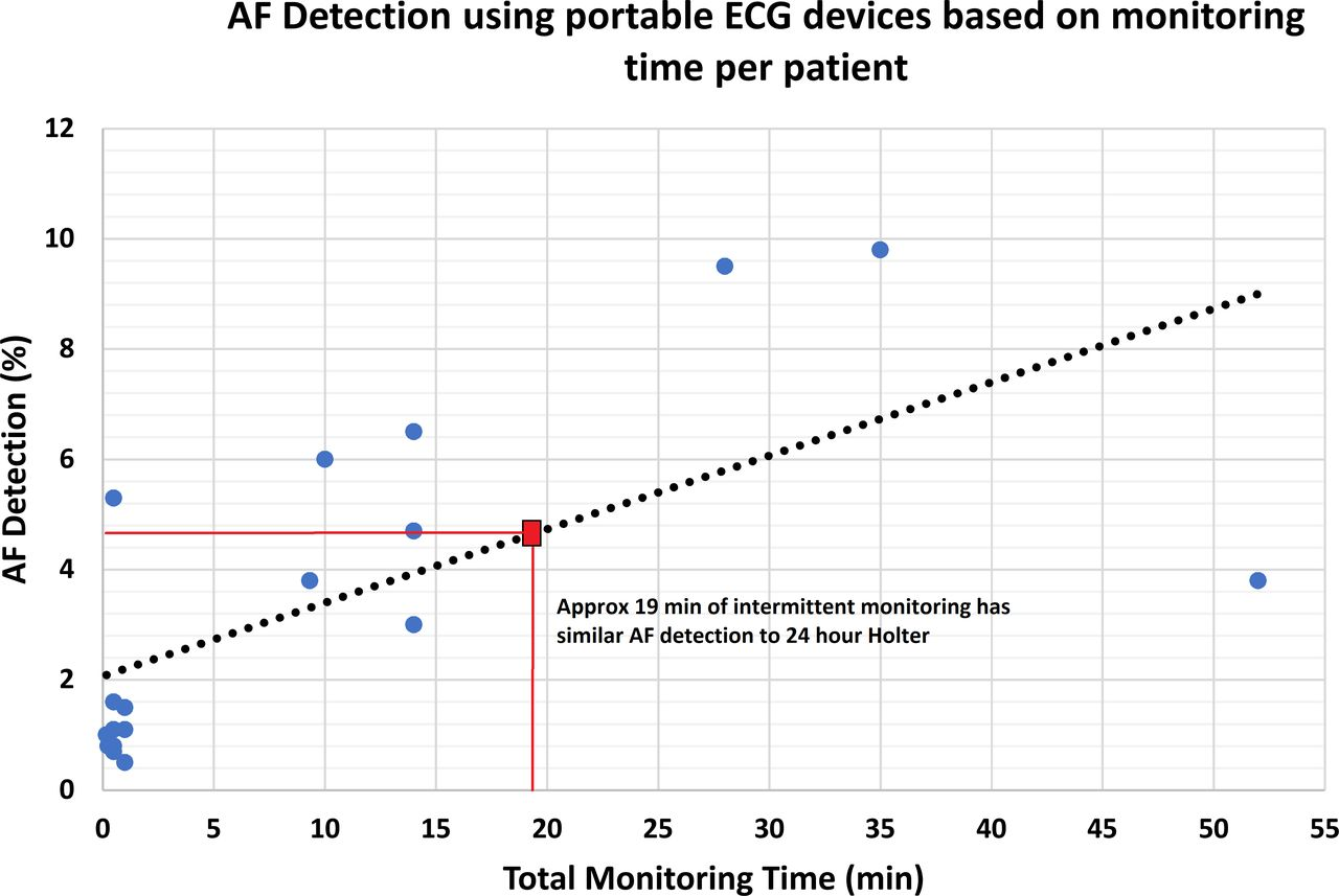 Atrial fibrillation detection using single lead portable