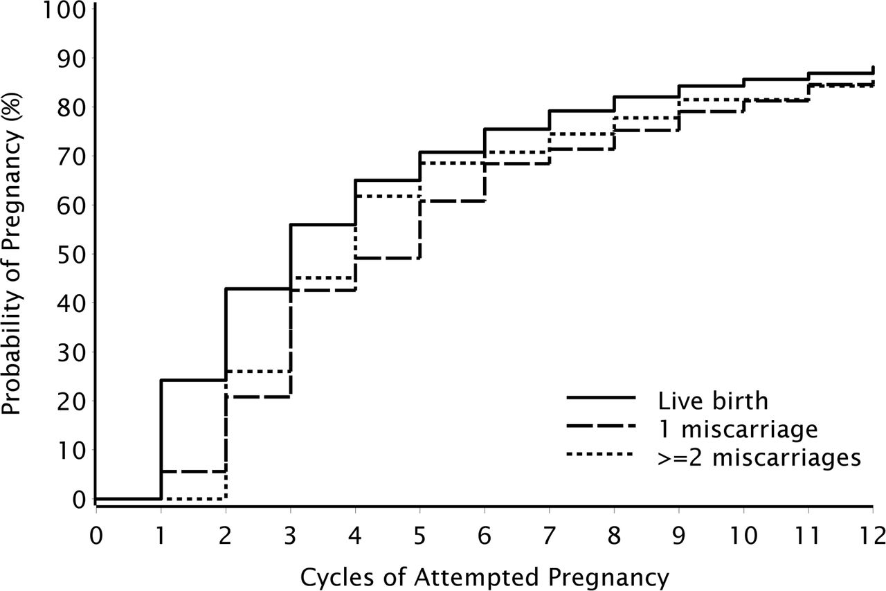 Fecundability among Danish women with a history of miscarriage: a