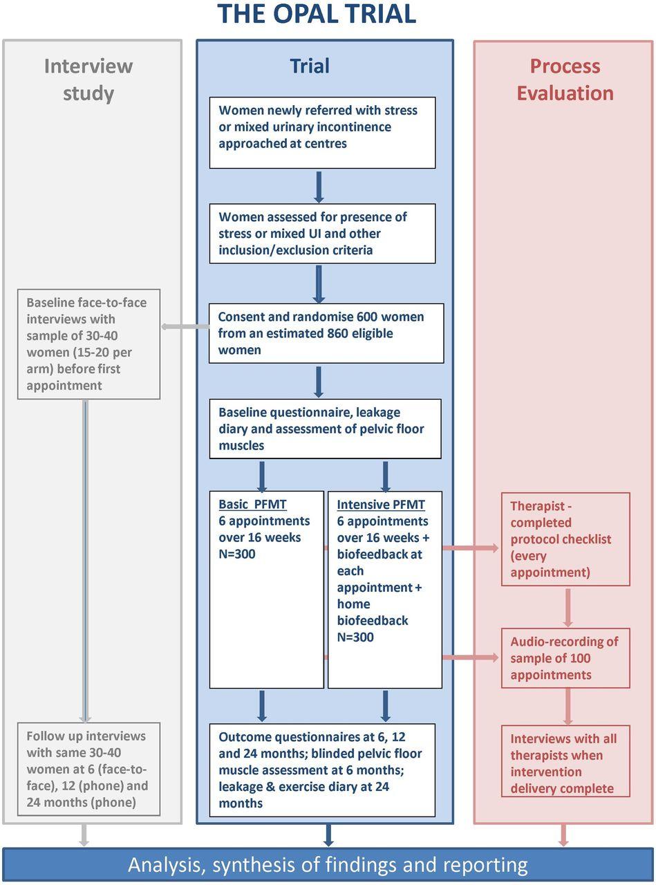 Effectiveness And Cost Effectiveness Of Basic Versus Biofeedback