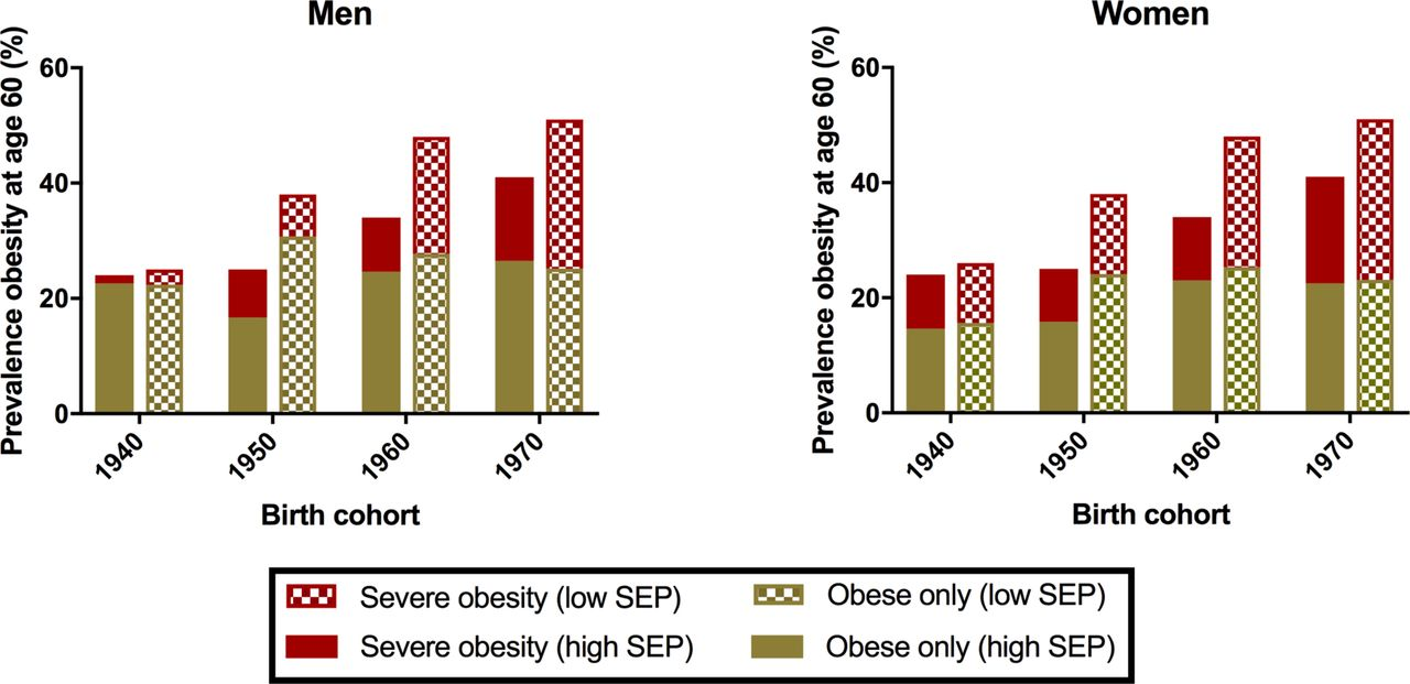 Socioeconomic inequalities in obesity modelling future trends in ...