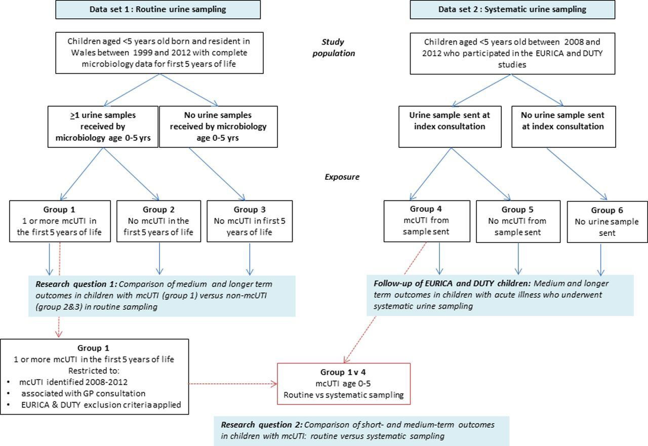 Long-term outcomes of urinary tract infection (UTI) in