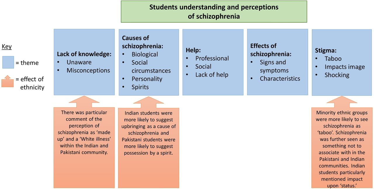 University Students U2019 Understanding And Perceptions Of