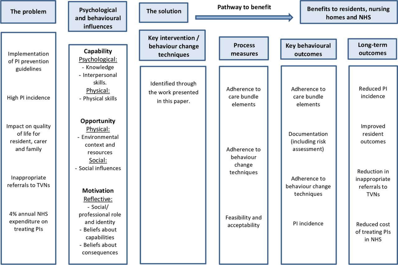 Preventing pressure injury in nursing homes: developing a