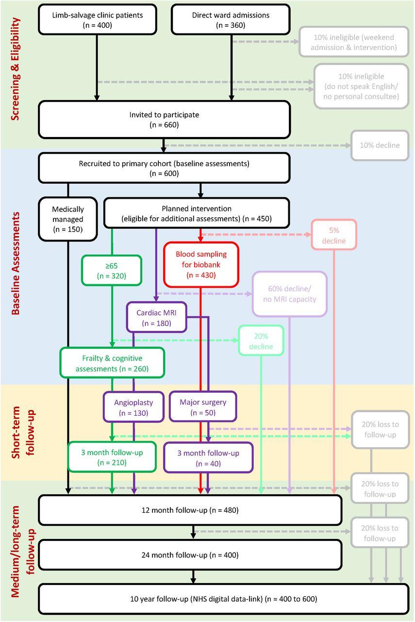 Leg ischaemia management collaboration (LIMb): study