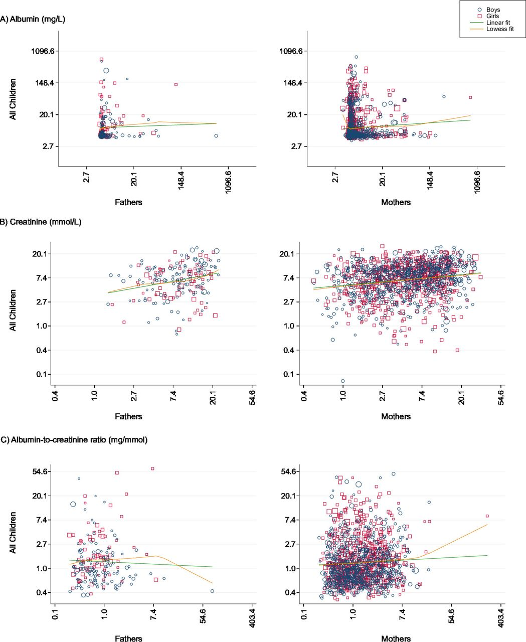 Albuminuria: population epidemiology and concordance in